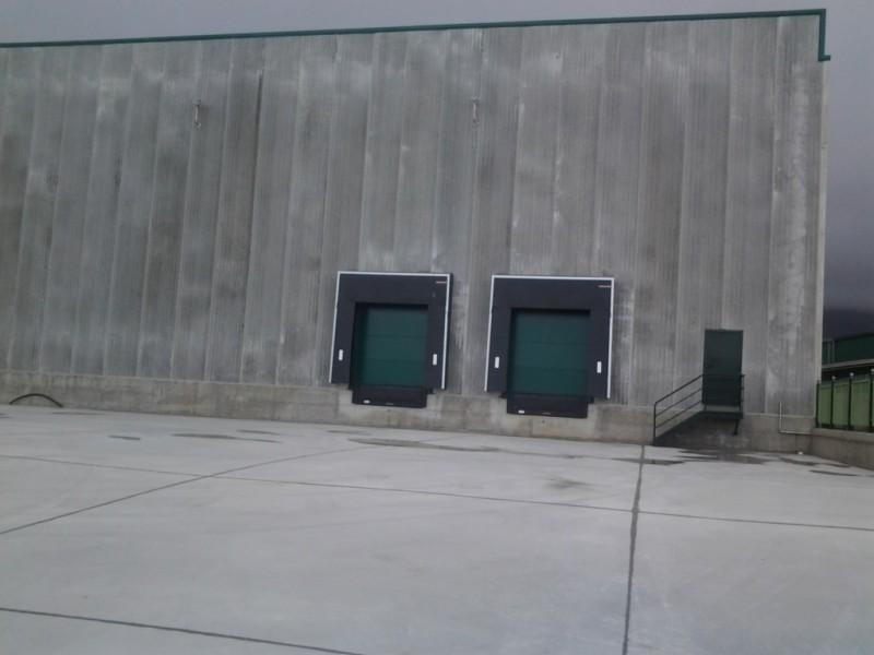 Puntos logísticos en nave industrial dedicada a congelados
